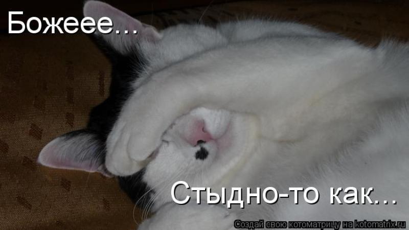 http://megane2.ru/forum/imagehosting/2012/11/13/201050a22dcee72aa.jpg